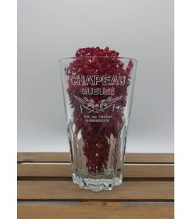 De Troch Chapeau Gueuze Glass 33 cl