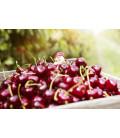 Cherry Chouffe (rouge) 33 cl