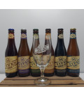 Viven Brewery Pack (6x33cl) + FREE Viven Glass