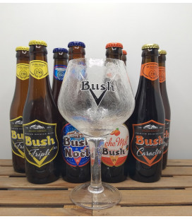 Bush Brewery Pack (8x33cl) + Bush Glass