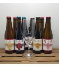 't Paenhuys Brewery Pack (8x33cl) + 't Paenhuys Glass