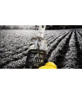 Ground Control Wheat Gin 50 cl