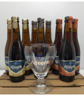 Affligem Brewery Pack (9x30cl) + FREE Affligem Glass