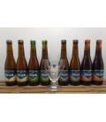 Affligem Brewery Pack (8x30cl) + FREE Affligem Glass