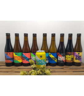 Brussels Beer Project Brewery Pack:  9 + FREE CAN  Juice Junkie