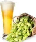 IPA Styles & Bitter Beers